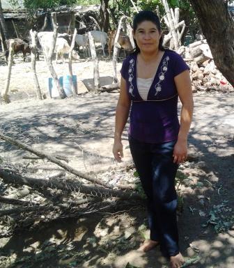 Reyna Margarita