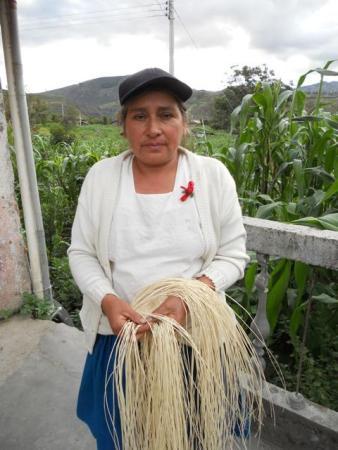 Rosa Arcila