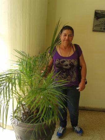 María Norela