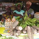 Nkwa Traders Group