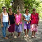 Corona De Cristo Group