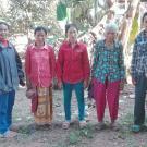 Sophoeurt's Group