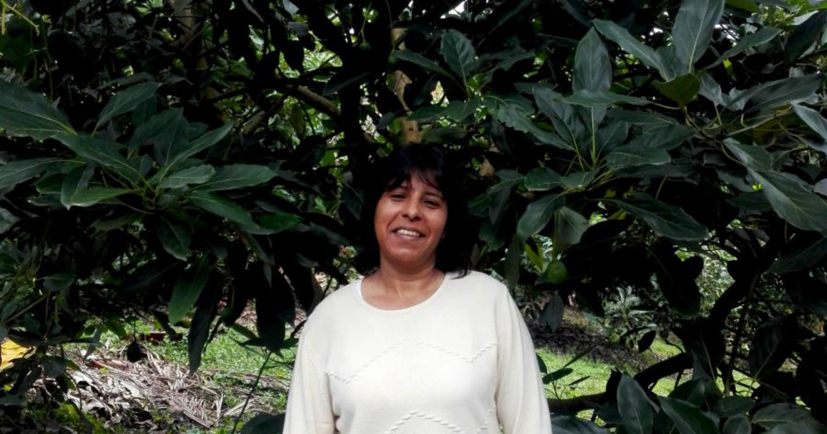 delia single parents Delia viader: in the early 80's  i was a single parent with three children between the ages of 1 ½ and 6 years old who had recently relocated my family from.