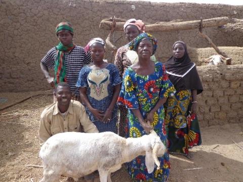 photo of Amassagou Group