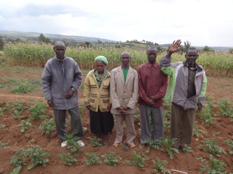 photo of Kibakenge Small Scale Farmers Self Help Group