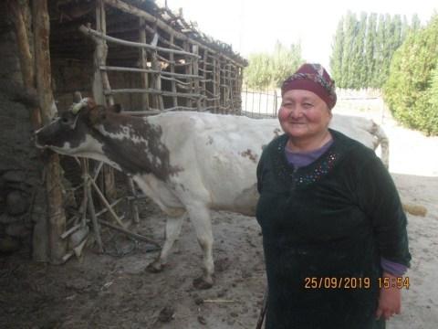 photo of Almakul