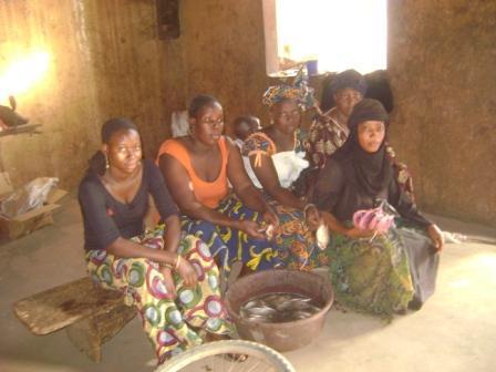 Danaya Group