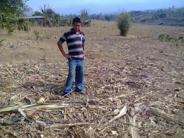 Moises Armando