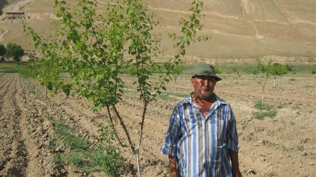 Khudoykul