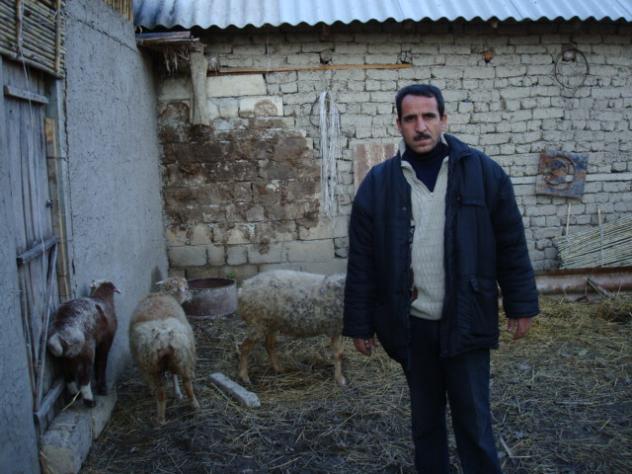 Qarib