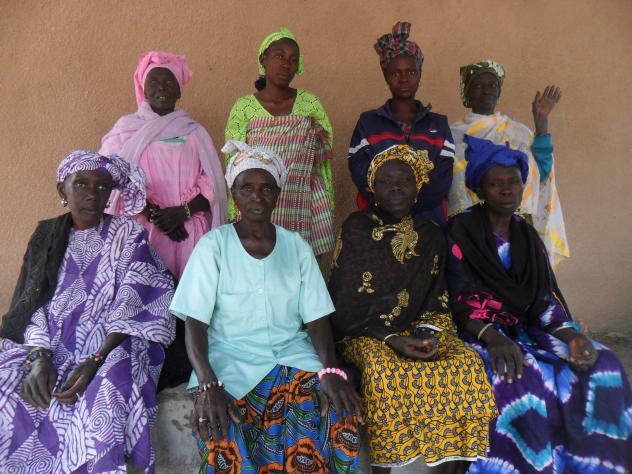 Veronique's Group