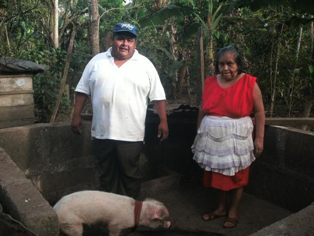G.s Piedra Viva Group