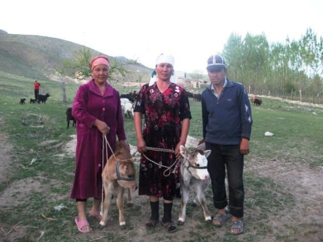 Saparkul's Group