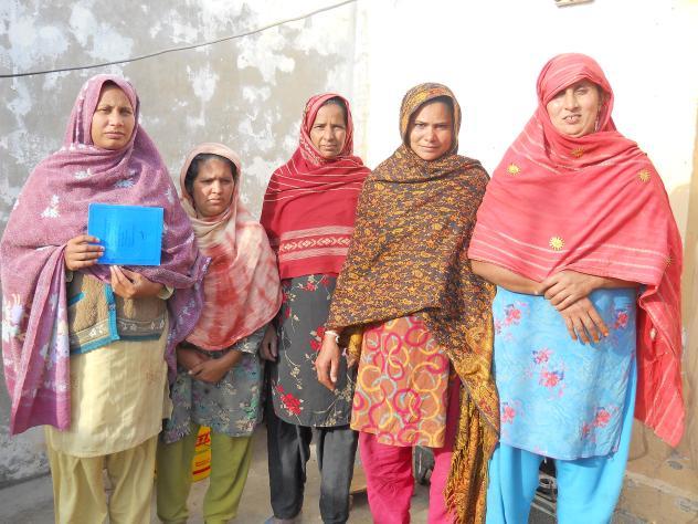 Safia Amjad Masih's Group