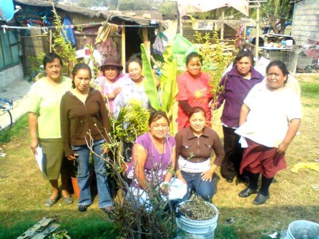 Las Vecinas Group