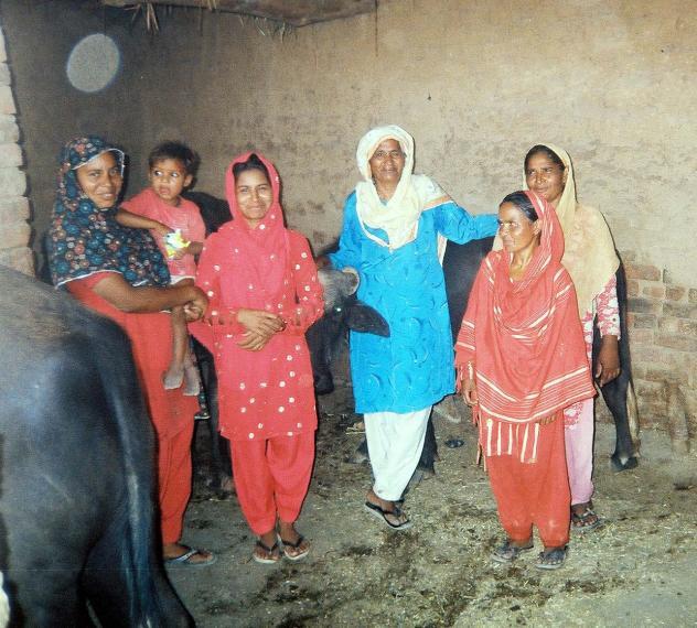 Anayatan Nawab Hussain Group