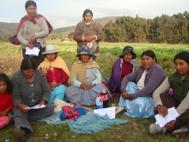 Buena Esperanza Cajata Pampa Group