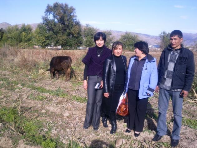 Aizada's Group